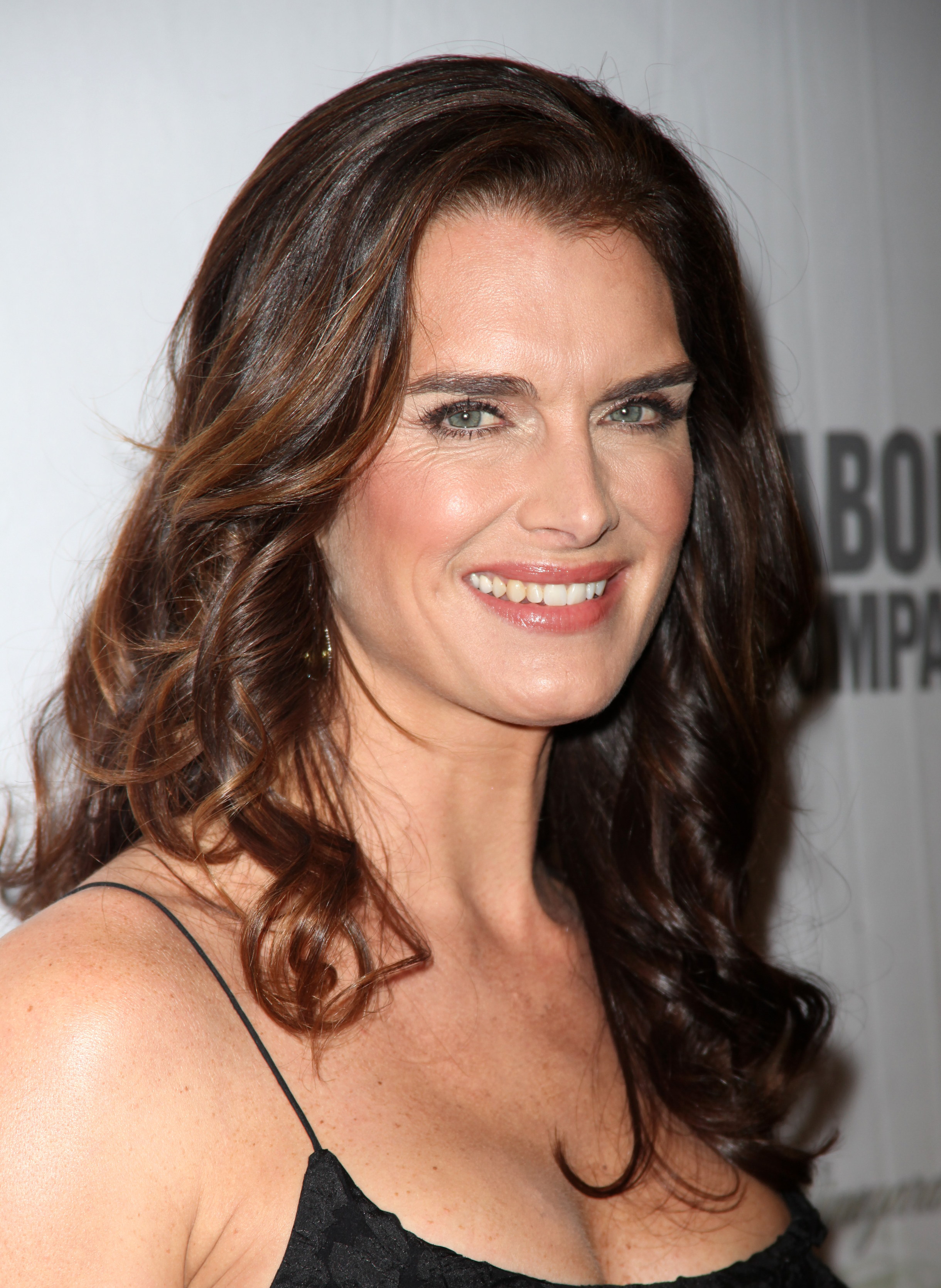 ShieldsWM23231599 Brooke Shields