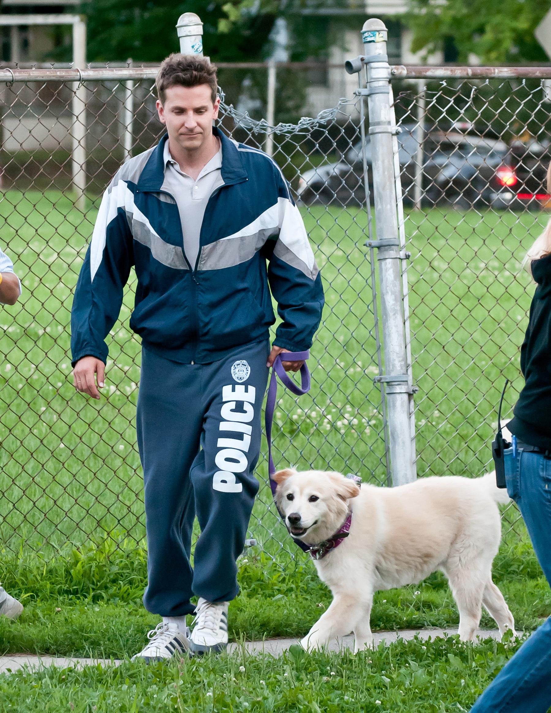Bradley Cooper dog