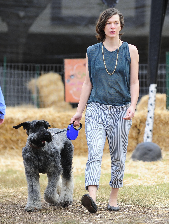 Milla Jovovich dog
