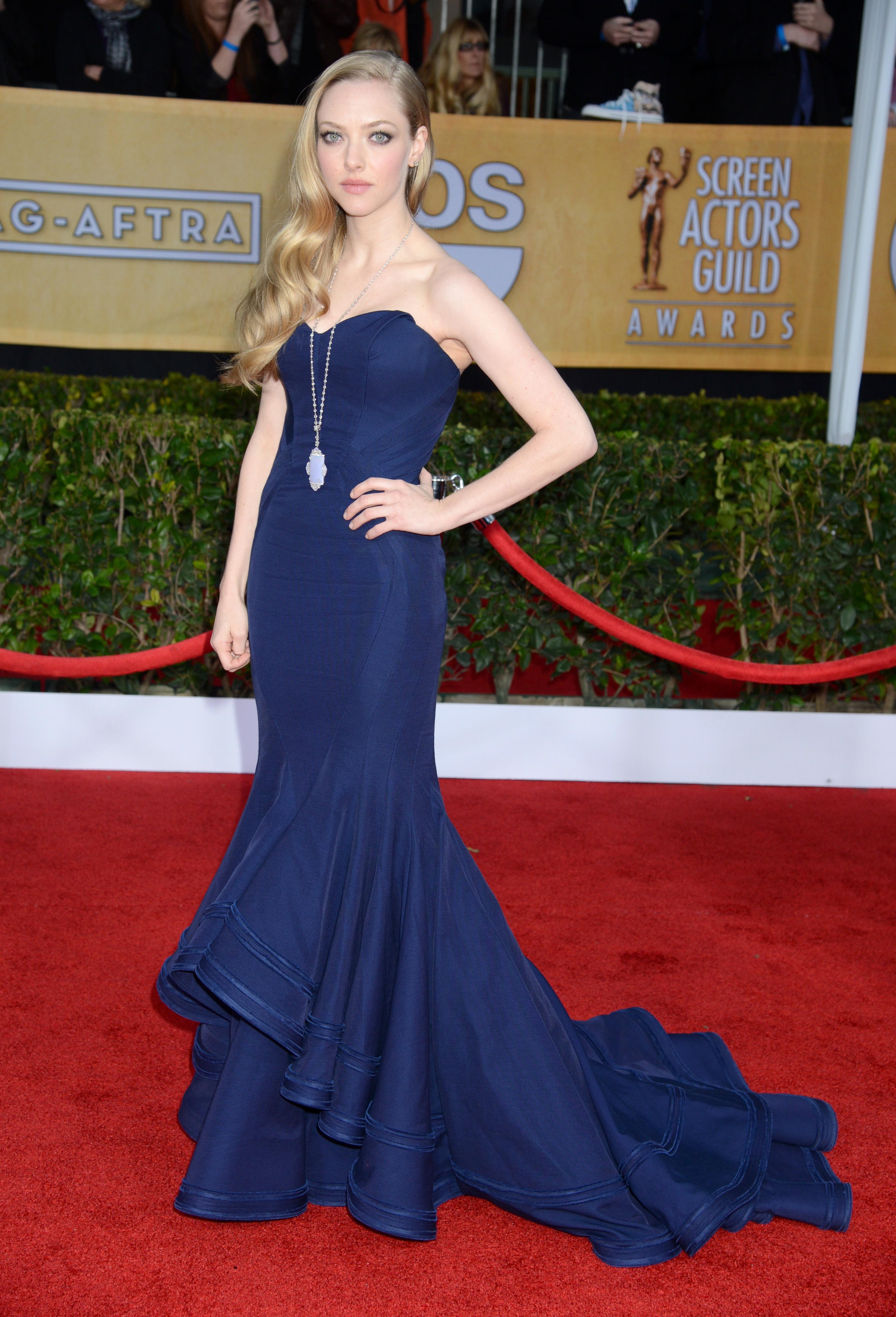 Amanda Seyfried blue gown 2013 SAG