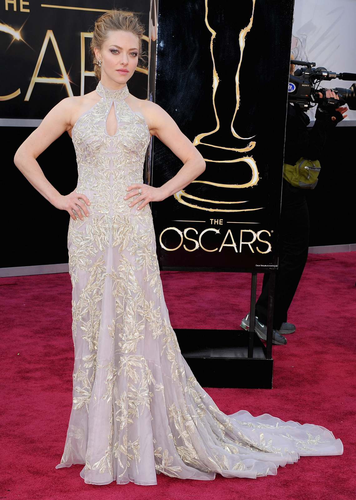 Amanda Seyfriend Oscars 2013