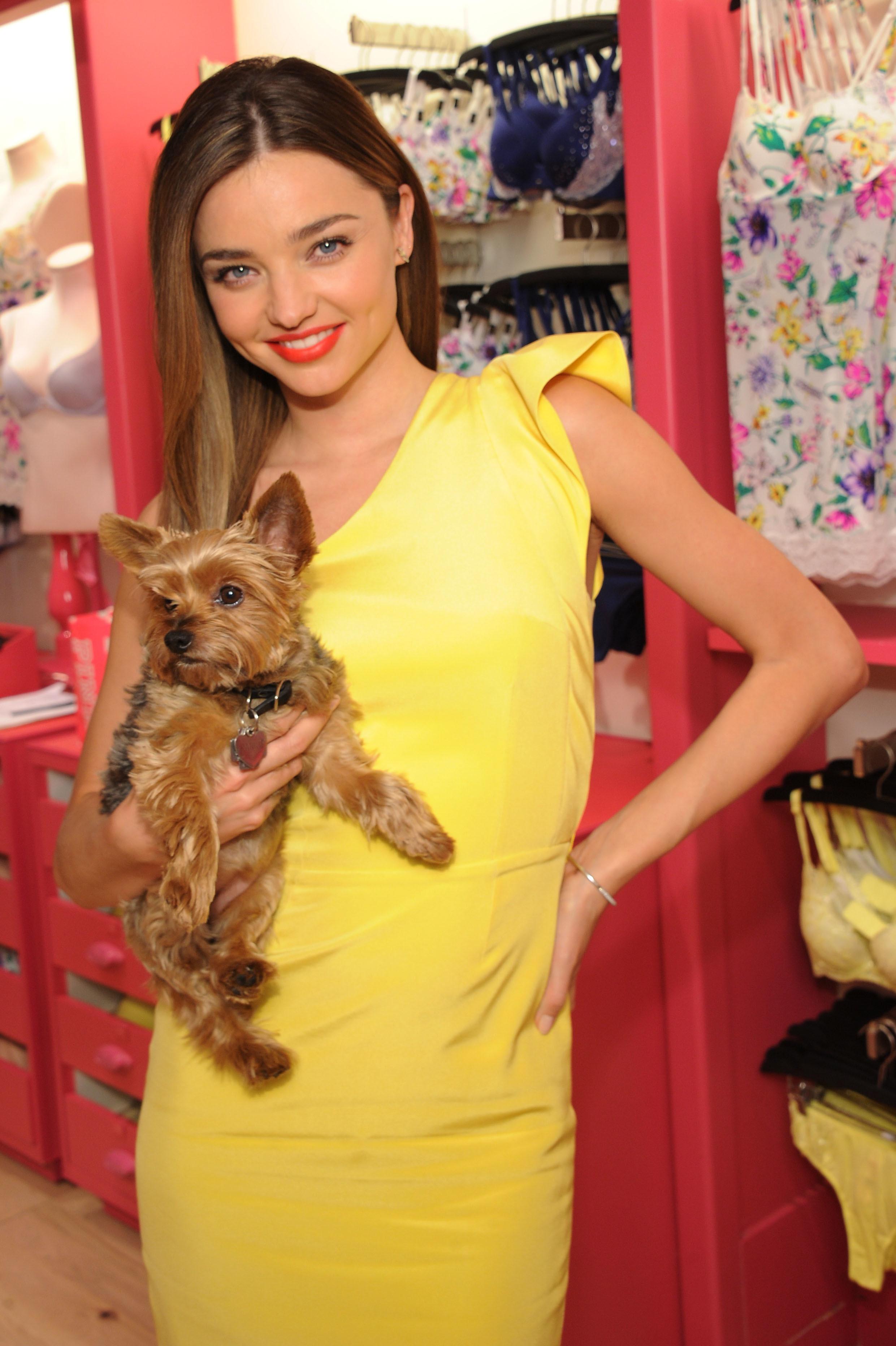 miranda kerr victoria's secret model frankie dog puppy