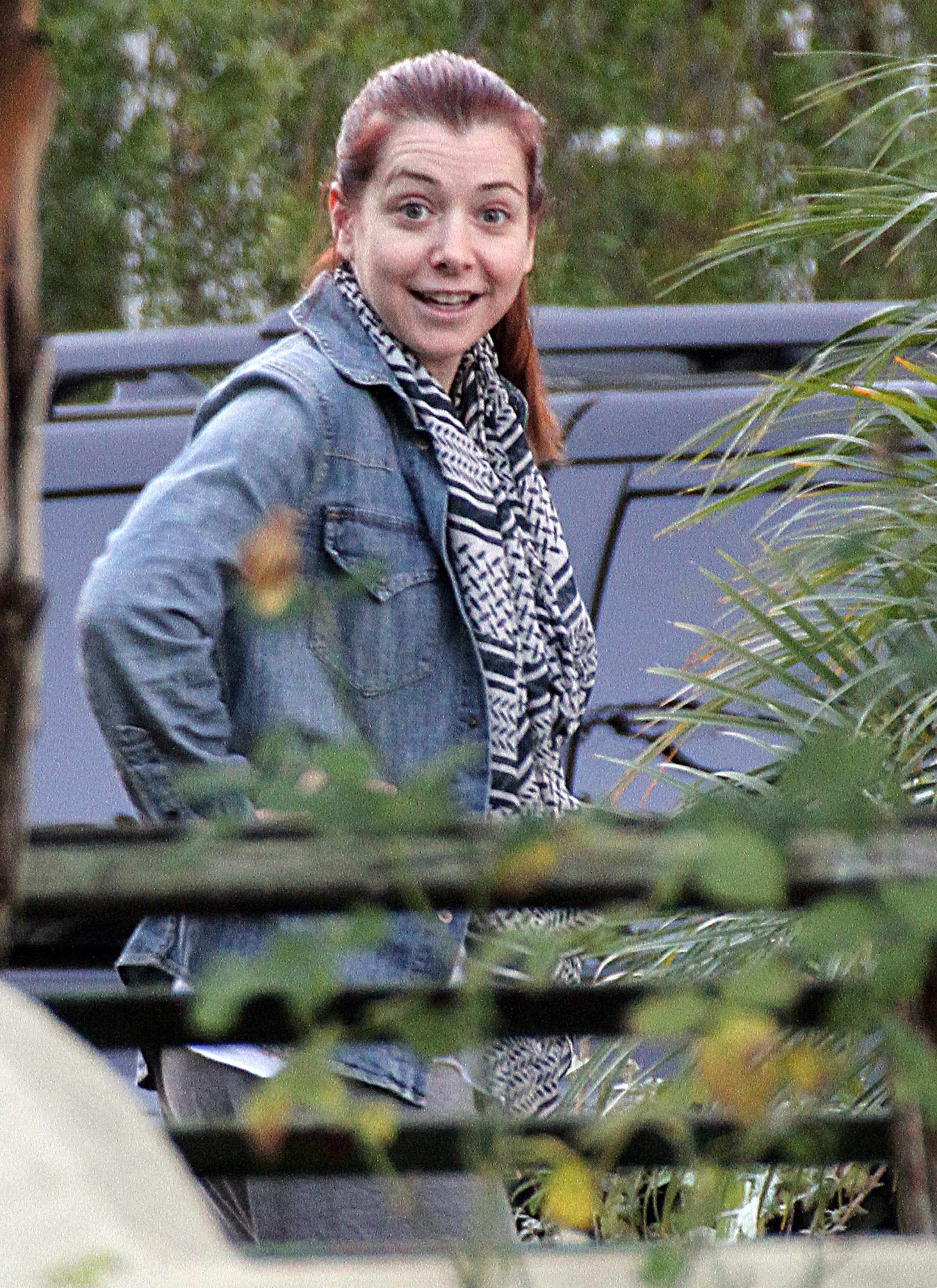 Alyson Hannigan without makeup