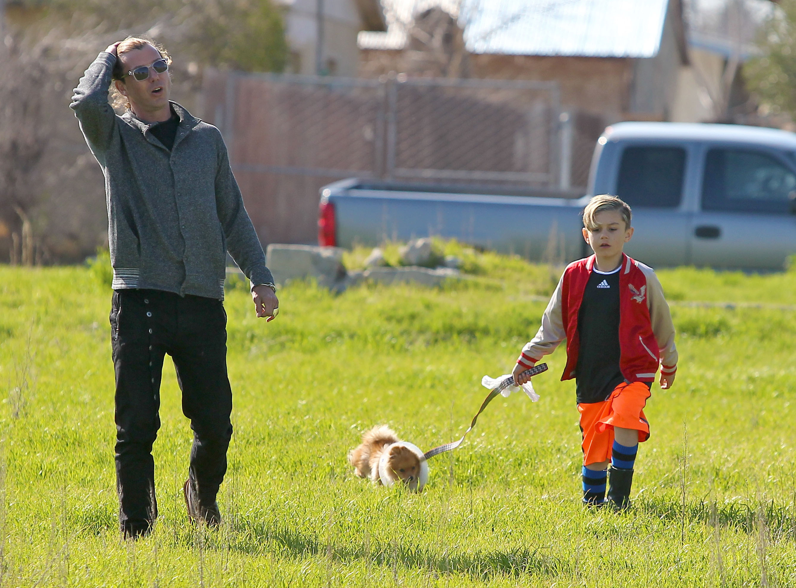 Gavin Rossdale and kingston puppy park