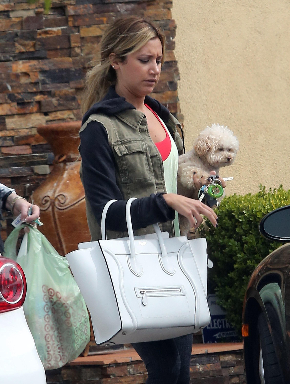 Ashley Tisdale dog