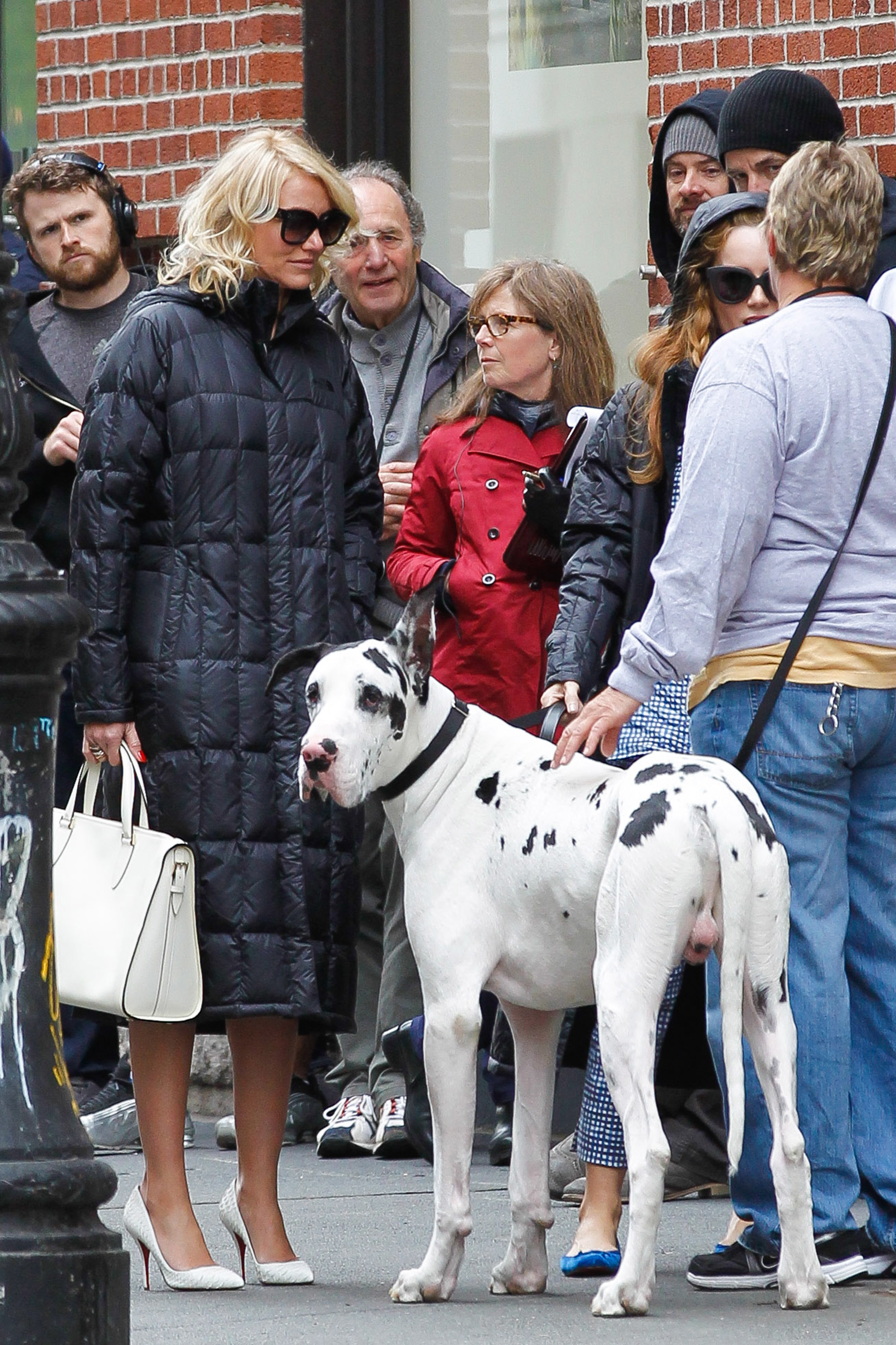 Cameron Diaz and Leslie Mann filming dog