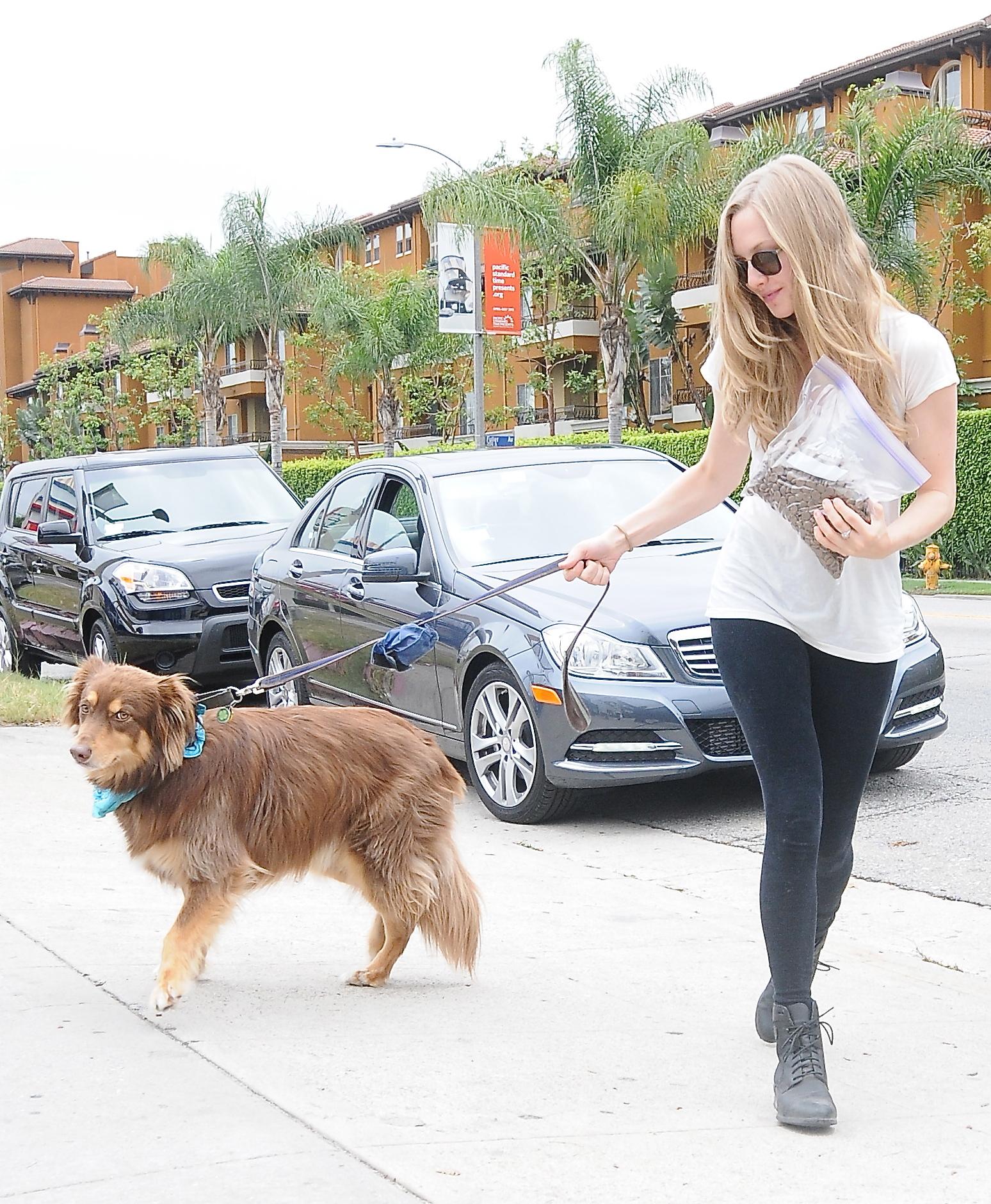 Amanda Seyfried dog