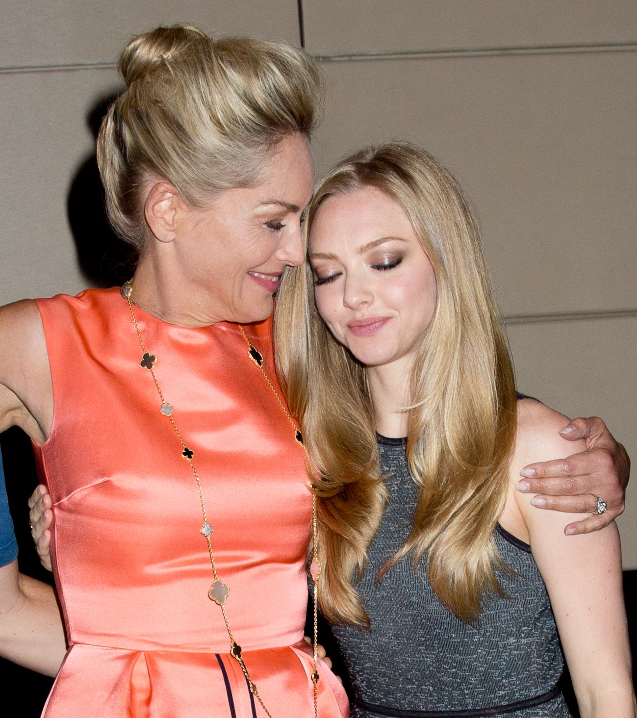 Sharon Stone Amanda Seyfried