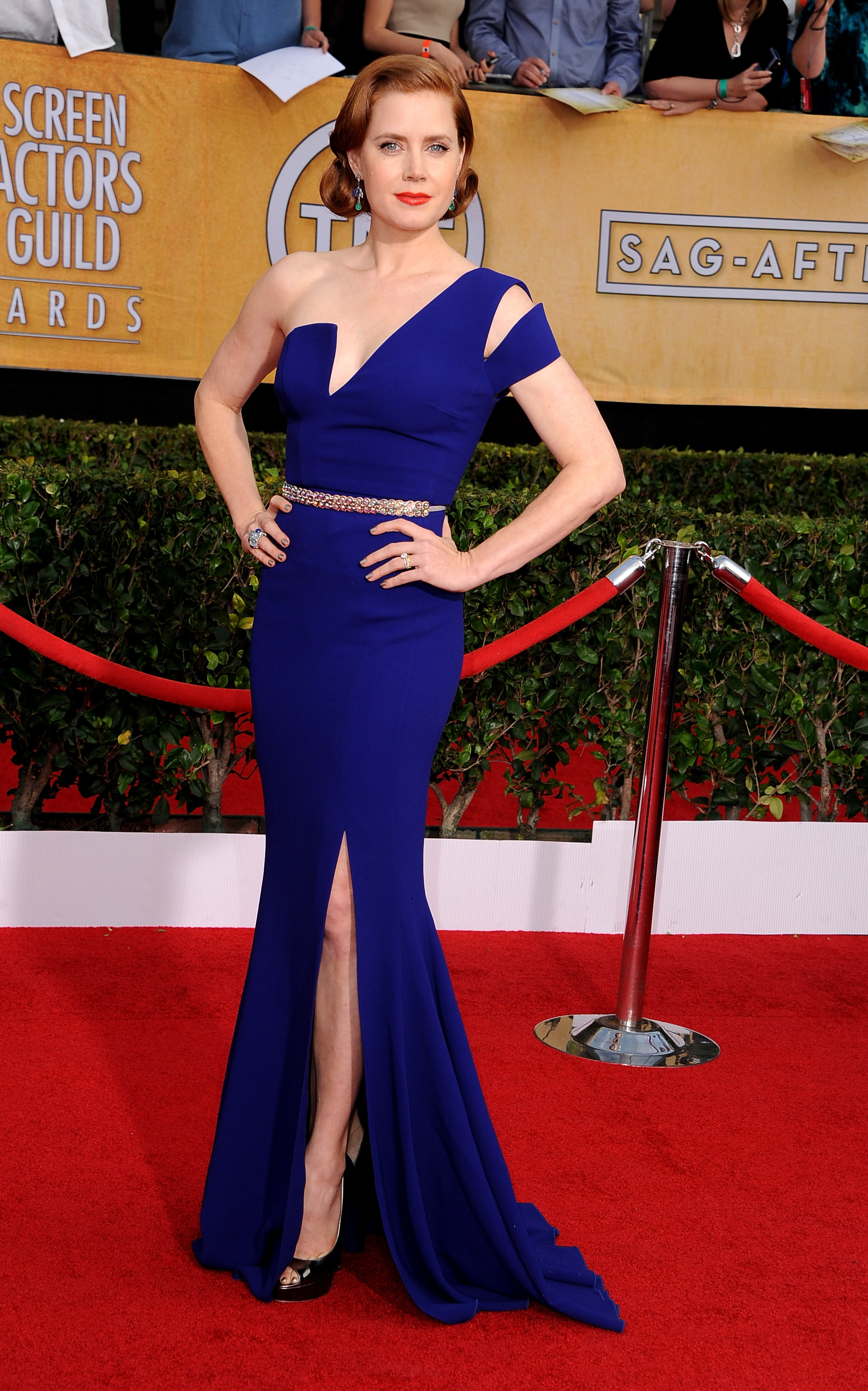 amy adams sag awards
