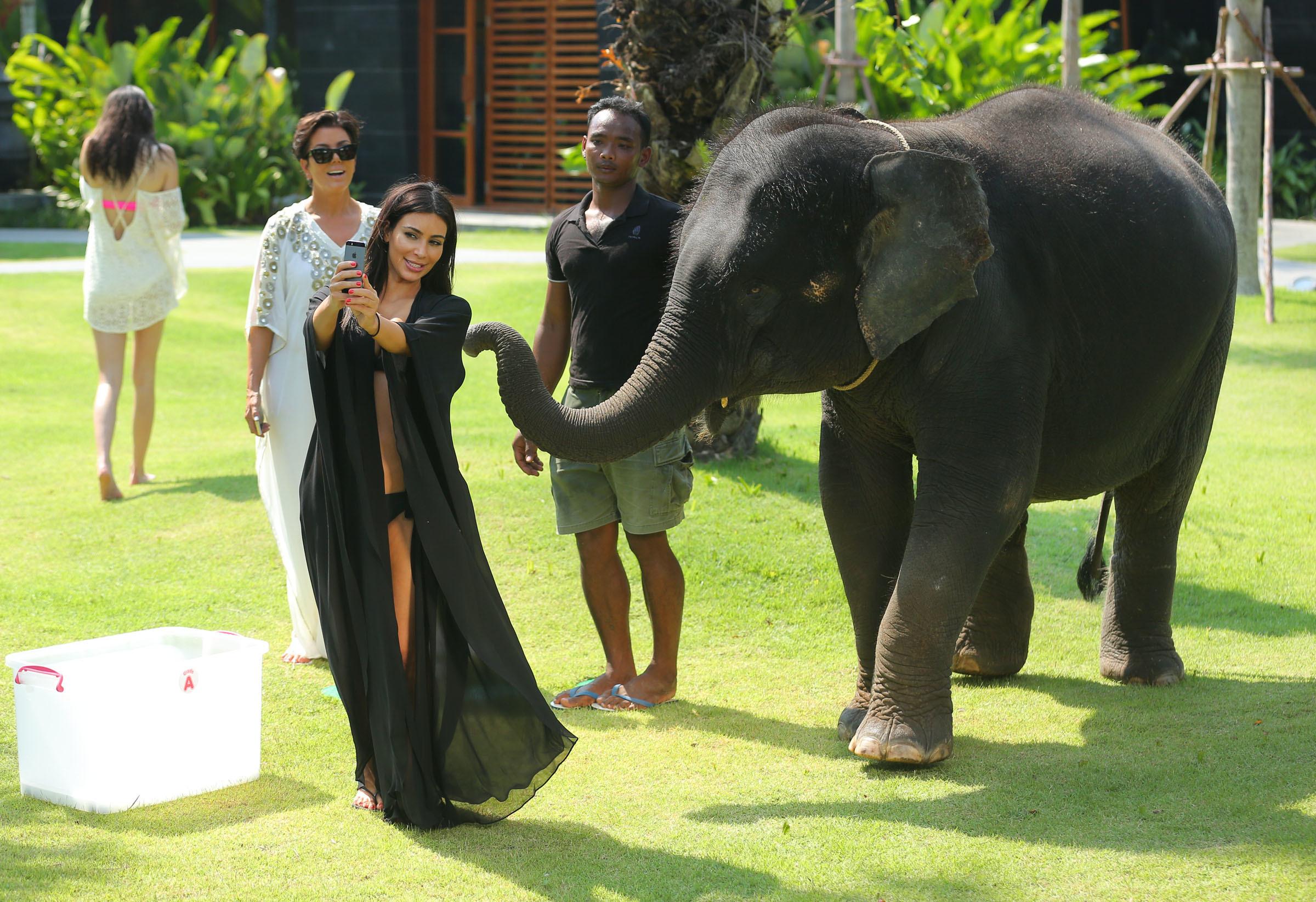 kim kardashian elephant