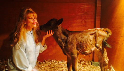 Charo credits 'Wife Swap' with saving her adopted pet