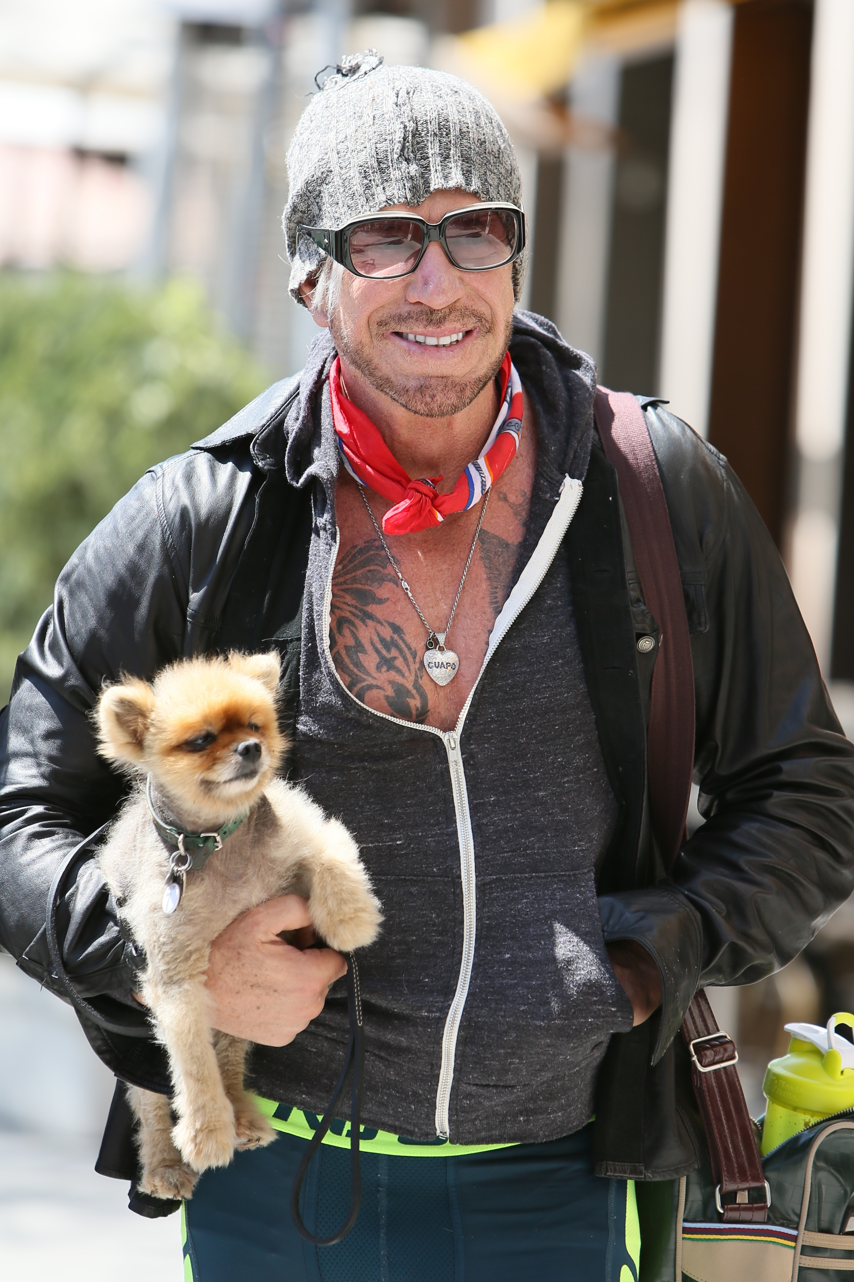 mickey rourke dog