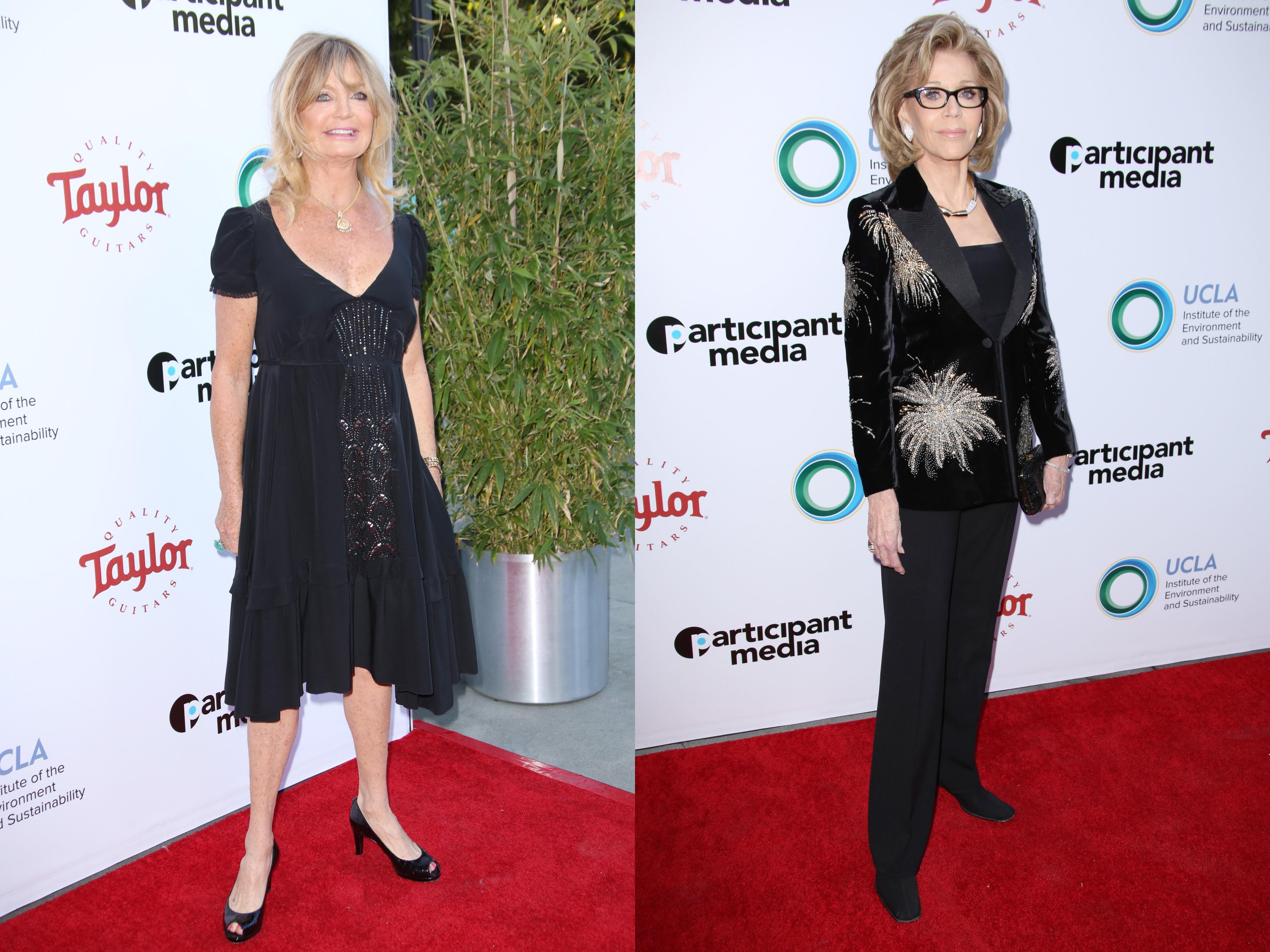 Jane Fonda, Goldie Hawn turn heads at environment gala