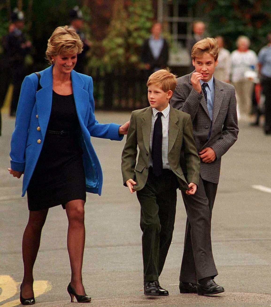Princess Diana and Princes William and Harry
