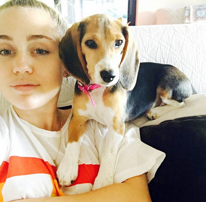 Meet Miley Cyrus' new pooch!