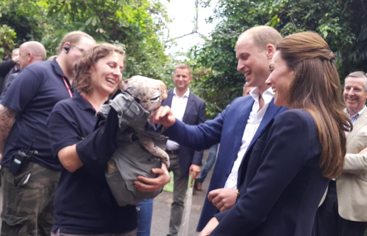 Prince William and Duchess Kate met a baby dino