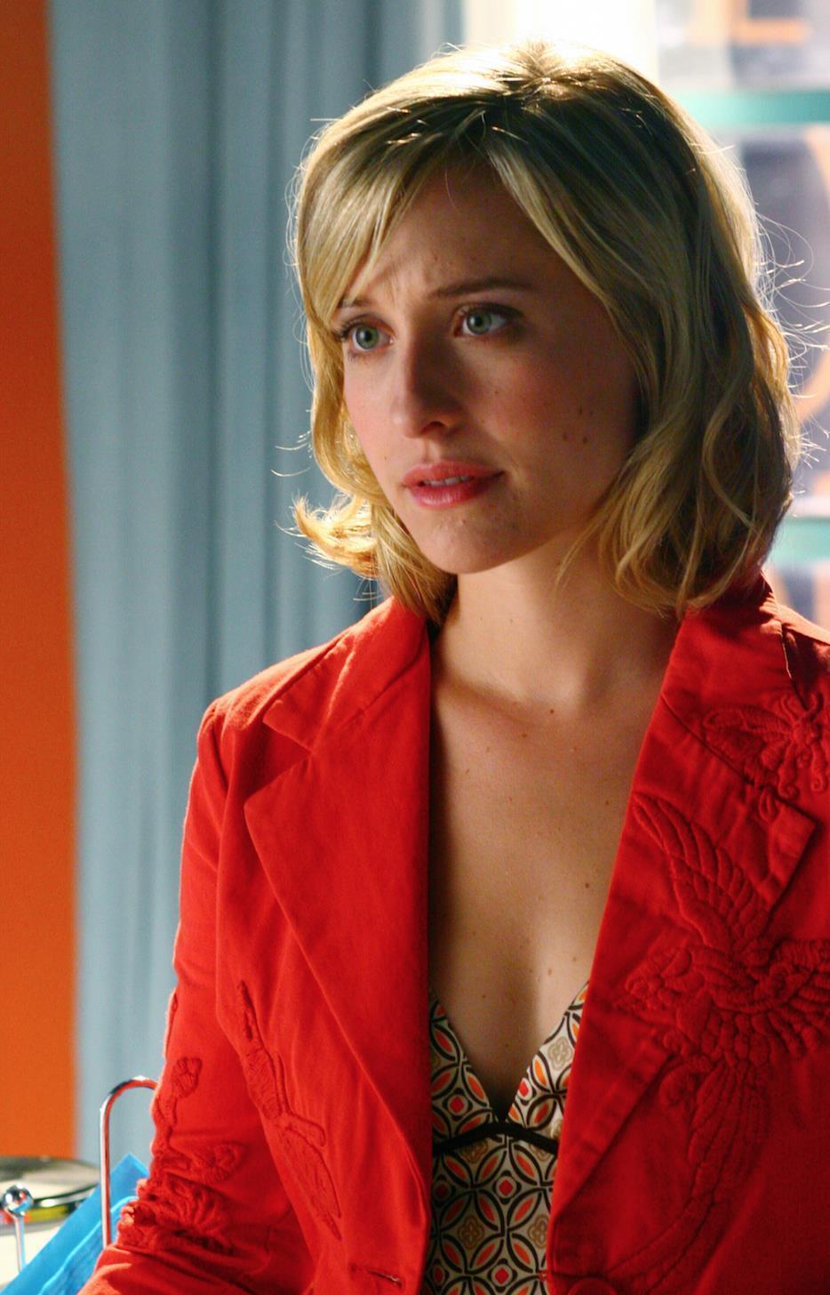 Katherine Heigl to play Jersey crime-buster Stephanie Plum