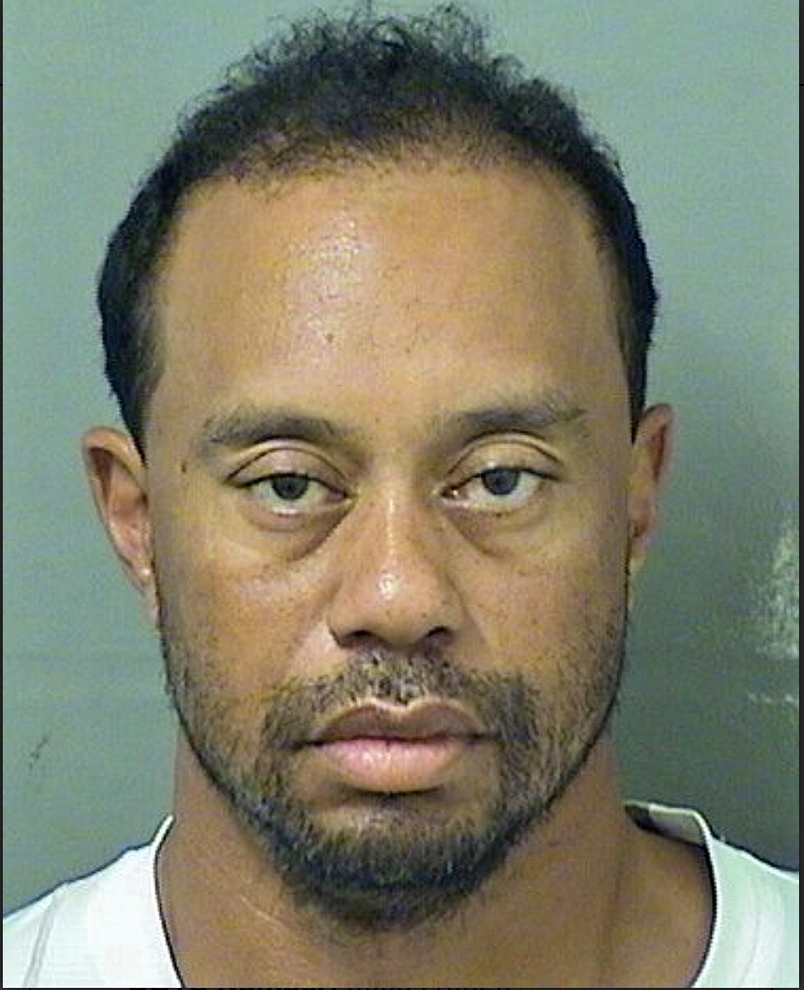 Tiger Woods is featured in a handout photo made available by the Palm Beach County Sheriff's office on May 29, 2017.