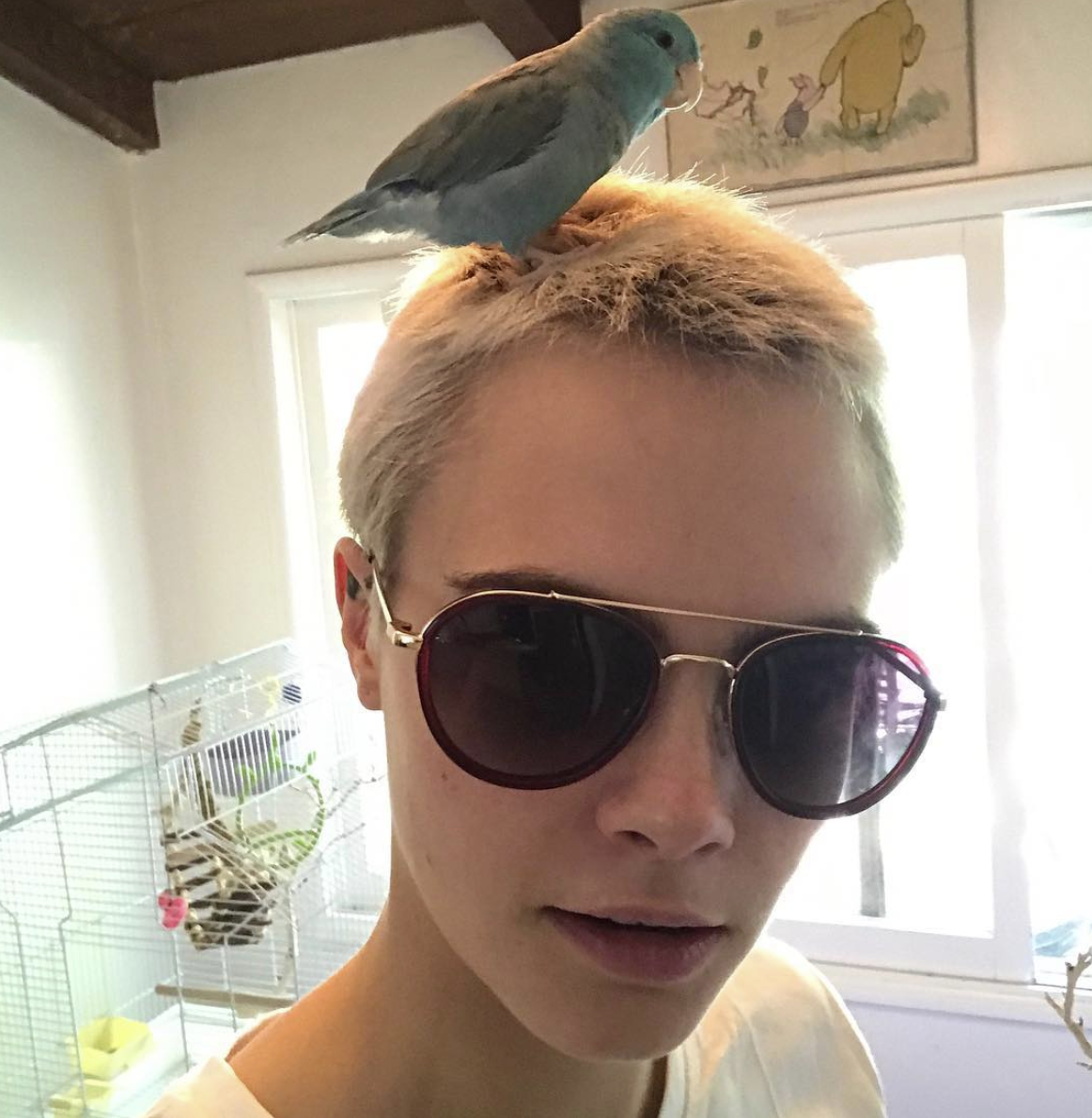 """🐦🐥🐦""   Cara Delevingne, who posted this on Aug. 1, 2017."