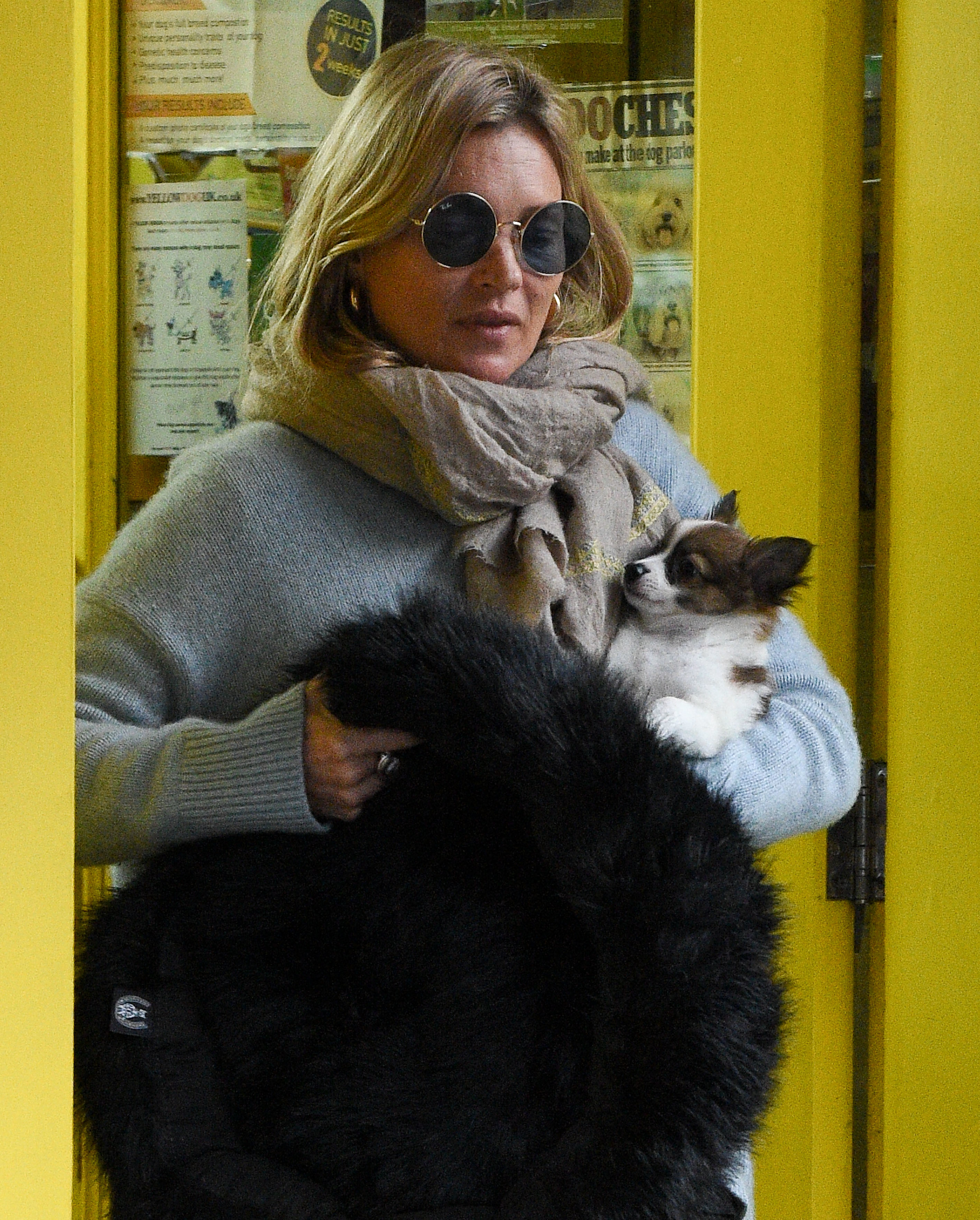 Supermodel Kate Moss was seen with a new puppy dog in the Primrose Hill neighborhood of England on Nov. 27, 2017.