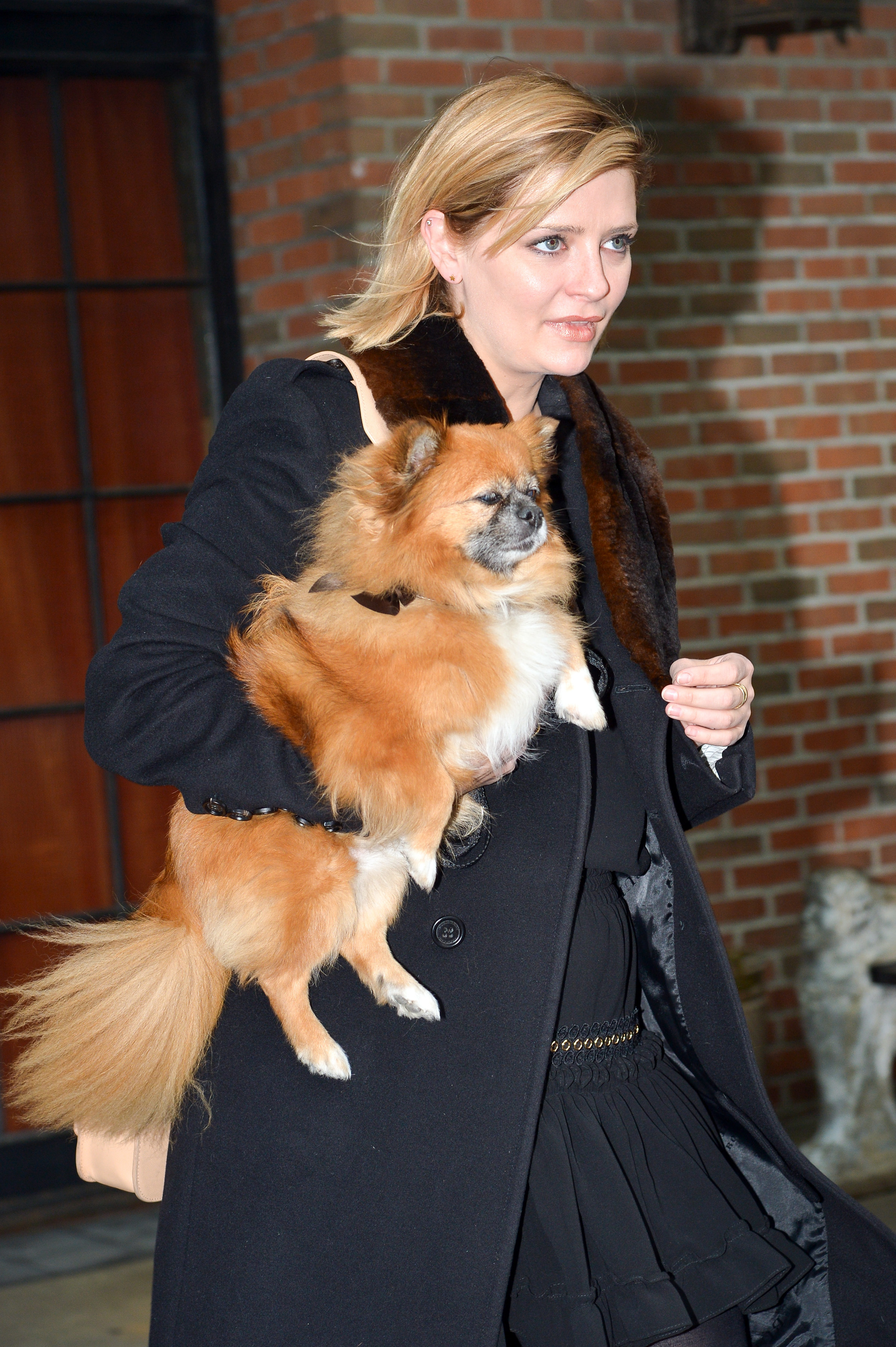 Mischa Barton was seen carrying her dog while out in New York City on Nov. 25, 2017.