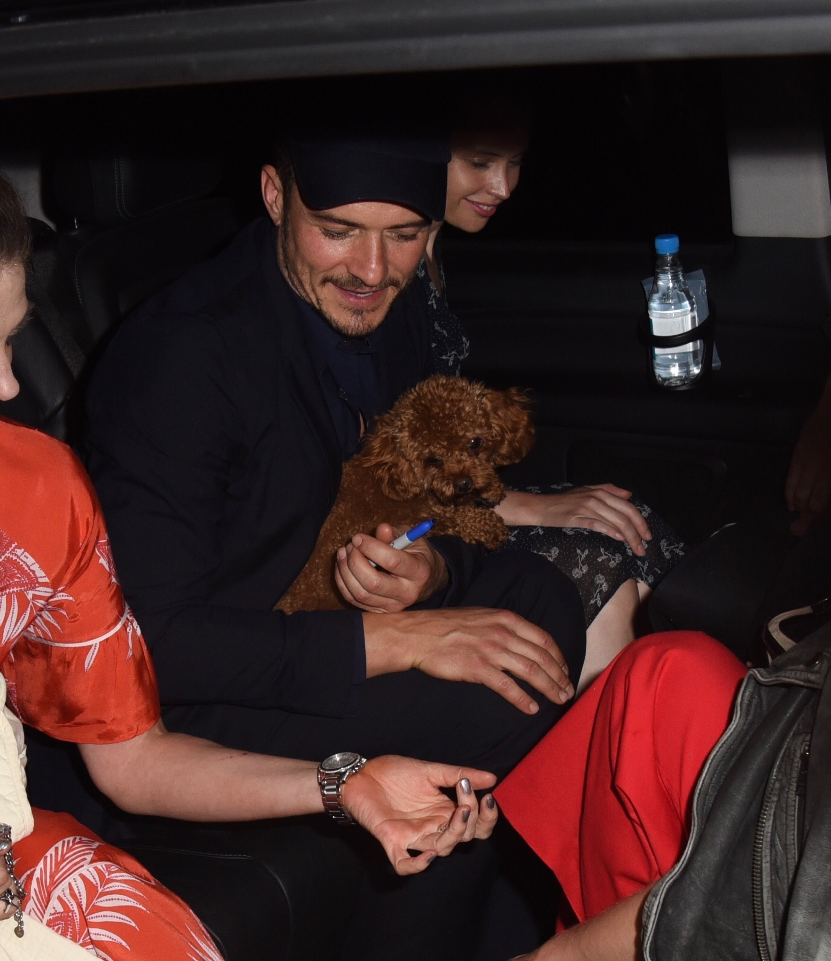 "Actors Orlando Bloom and Felicity Jones were seen leaving the press night for their new play ""Killer Joe"" while hanging with Orlando's dog  in London on June 4, 2018."