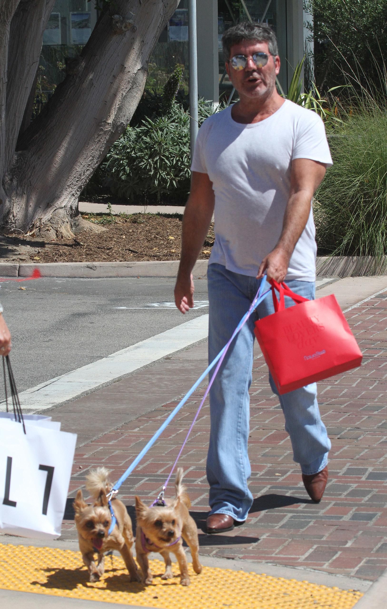 British TV mogul Simon Cowell took his dogs shopping while in Malibu, CA on June 27, 2018.