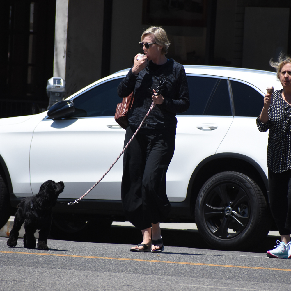 Jane Lynch was spotted grabbing an ice cream while walking her dog in Los Angeles on July 31, 2018.