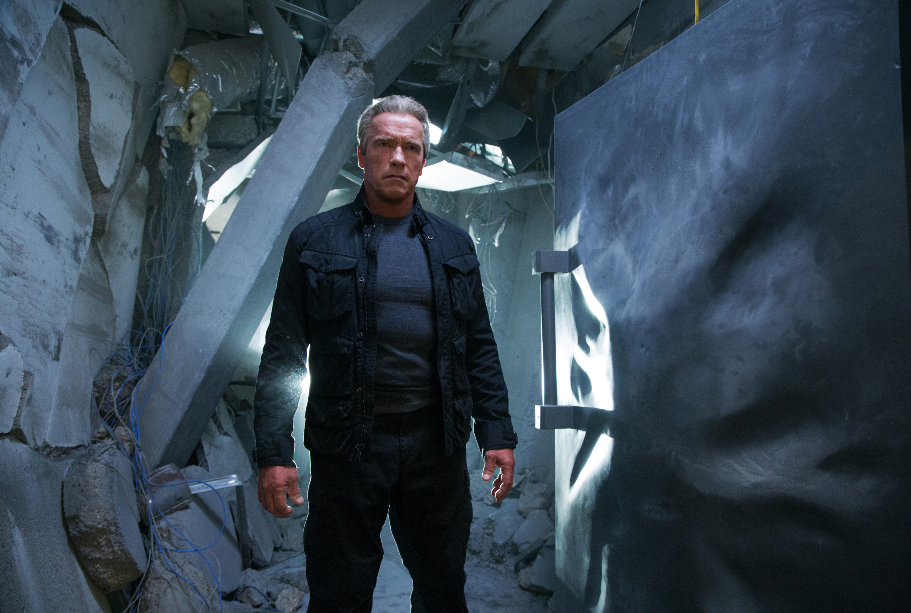 "Arnold Schwarzenegger stars in 2015's ""Terminator Genisys."""