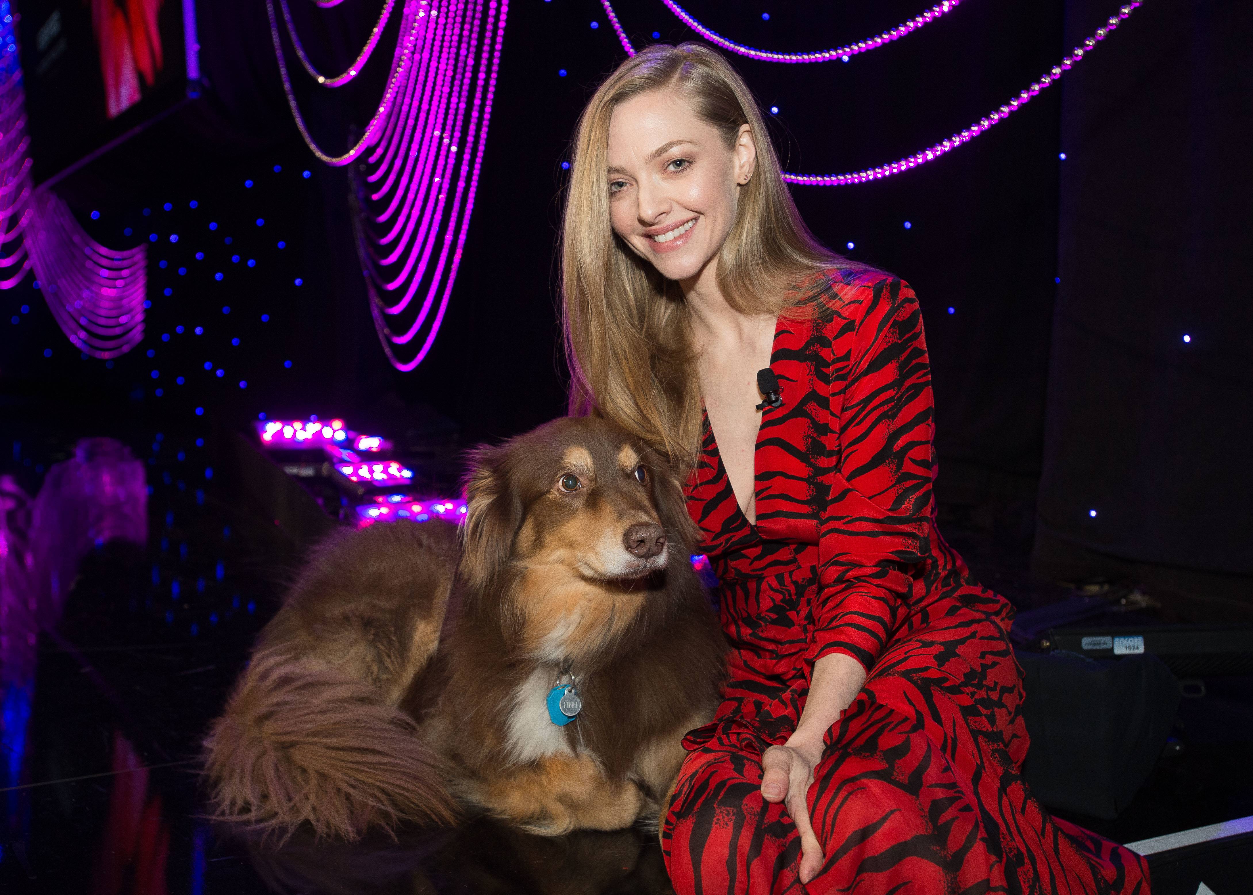 Amanda Seyfried and her dog, Finn, attend Forbes Travel Guide's Verified Luxury Summit kick off event at the Beverly Hilton hotel in Beverly Hills on Feb. 26, 2019.