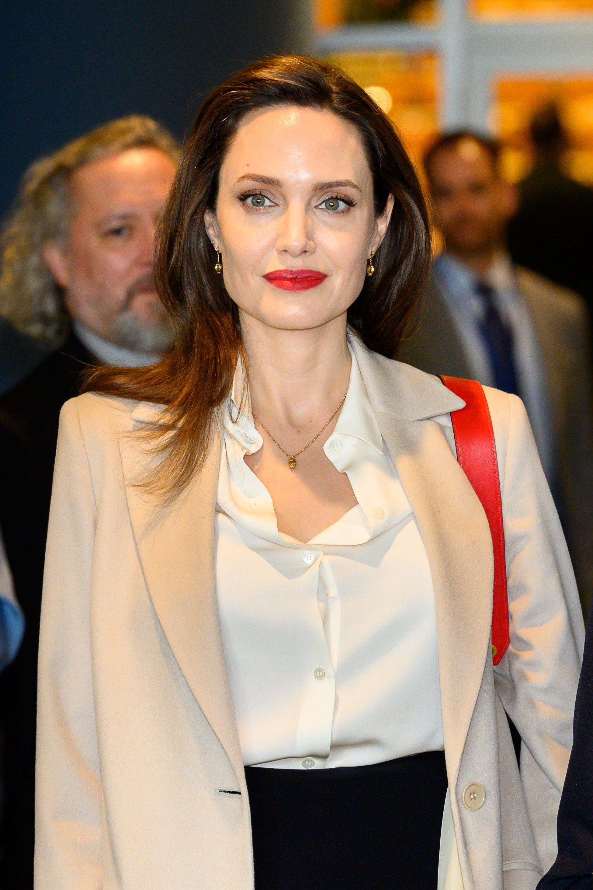 Angelina Jolie and more UN ambassadors from Hollywood