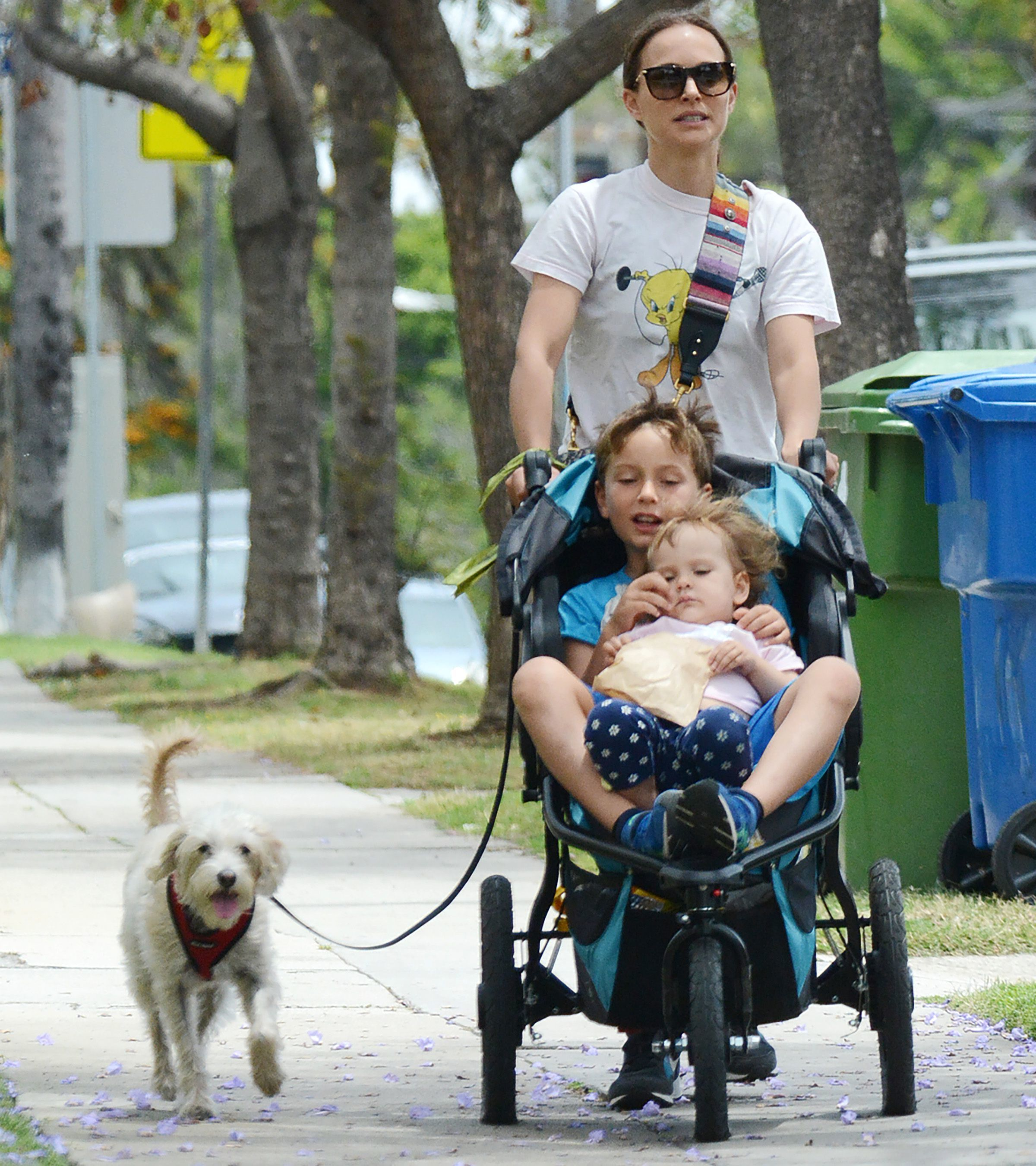 Natalie Portman goes for a walk with her dog and kids Aleph and Amalia Portman Millepied in Los Angeles on May 19, 2019.