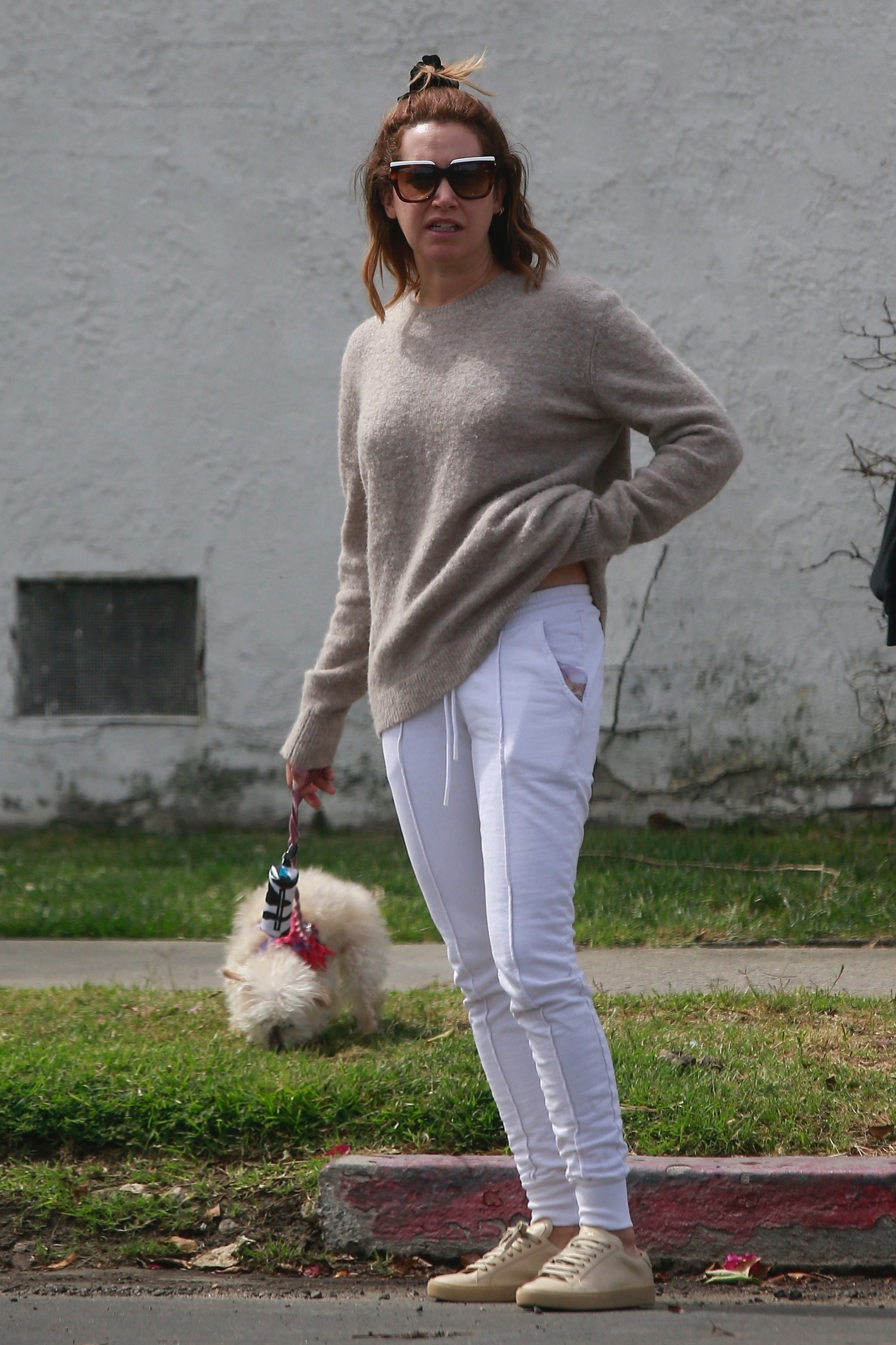 Ashley Tisdale took her dog for a walk in Los Feliz, CA on May 18, 2019.