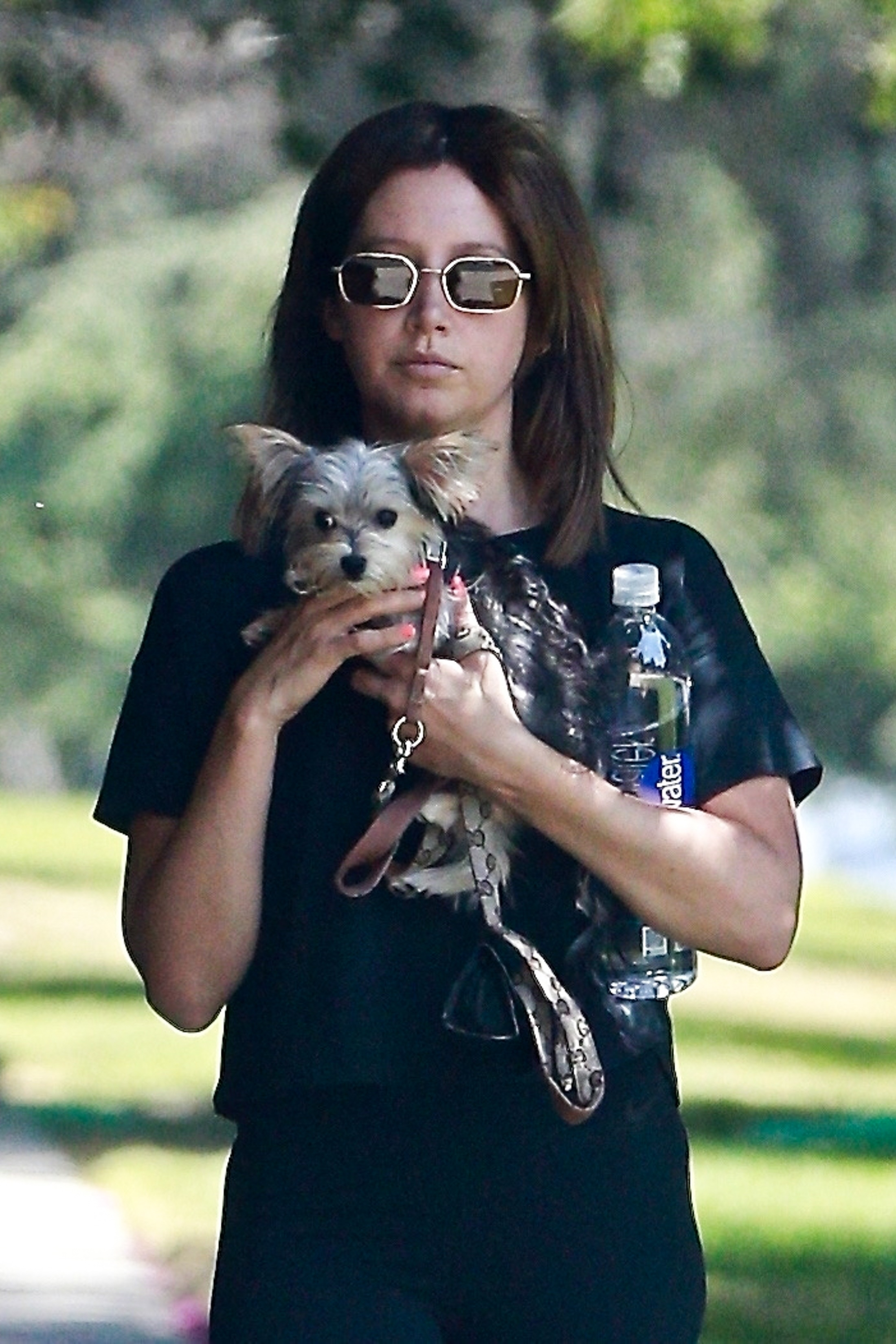 Ashley Tisdale took her dog for a hike in Los Feliz, CA on Aug. 16, 2019.